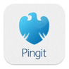 Image of Barclays PINGIT Logo